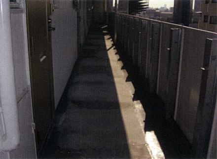 防水工事 廊下床長尺シート 施工前状況