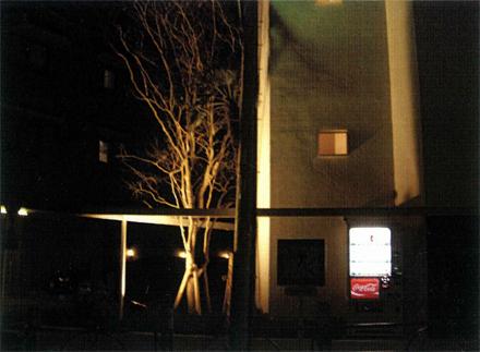 電気設備工事 植栽帯ライトアップ 照明点灯状況
