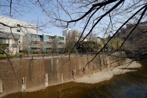 石神井川越しの公園と緑道がバルコニー前面に面しています。