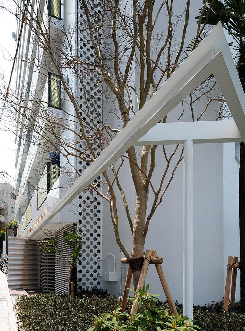 鉄骨ウィングフレームに囲まれた百日紅(サルスベリ)デザインリノベーション|賃貸マンション外壁大規模修繕|リフォーム空室改善事例